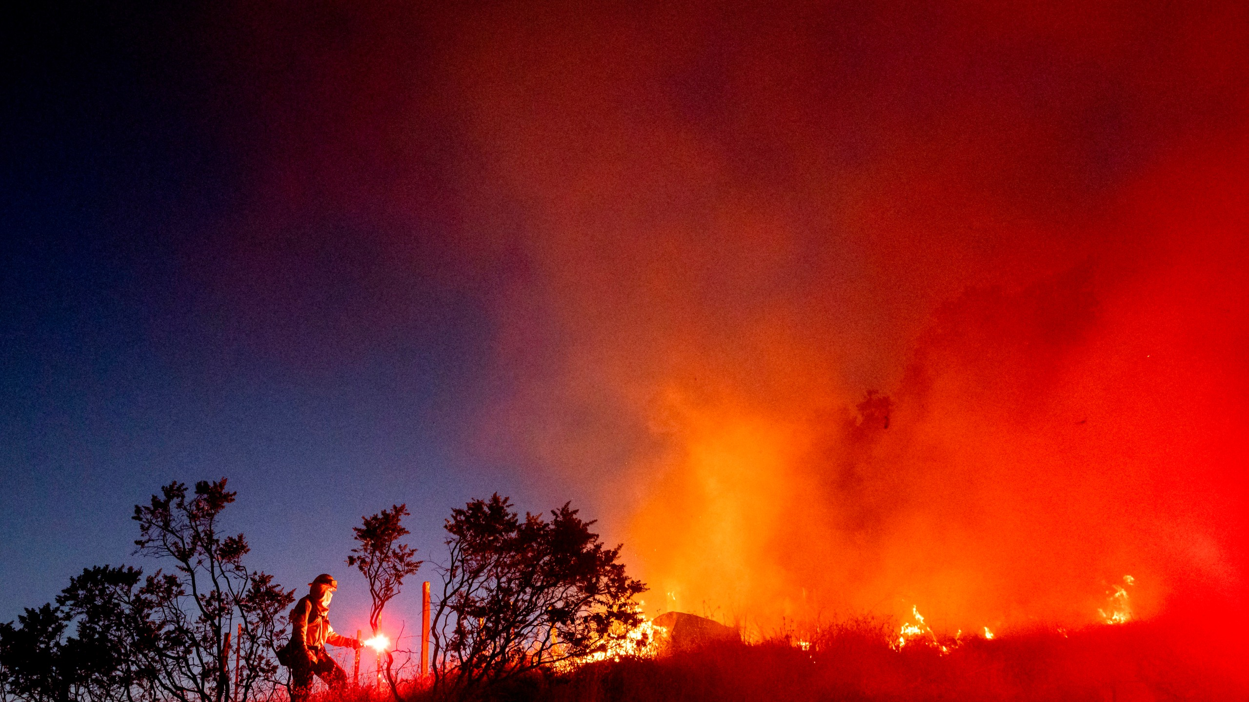 Firefighter Daniel Abarado lights a backfire while working to contain the Crews Fire near Gilroy on July 5, 2020. (AP Photo/Noah Berger)