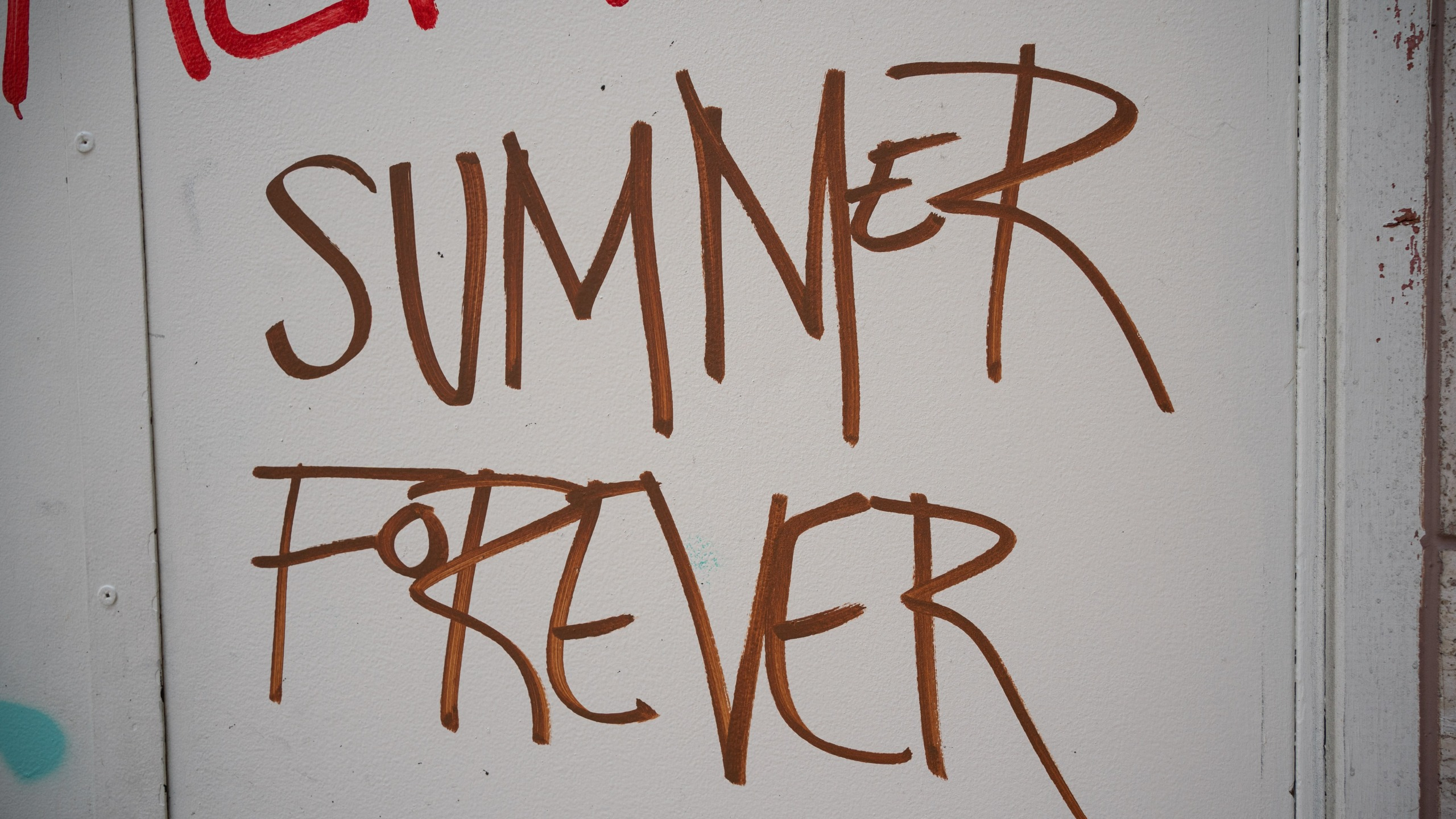Graffiti is seen in Westlake Park to honor Summer Taylor on July 5, 2020, in Seattle, Washington. Taylor was fatally struck by a car when a man drove into protesters early July 4 morning during a protest on Interstate 5, injuring another protester, Diaz Love, who was left in serious condition. (David Ryder/Getty Images)