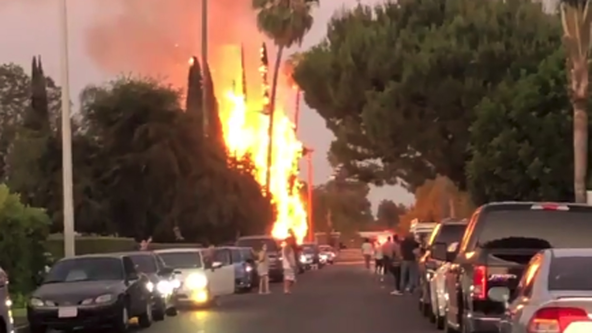 The San Dimas Sheriff's Station posted a video on Twitter on July 5, 2020, after trees caught fire after people lit illegal fireworks.