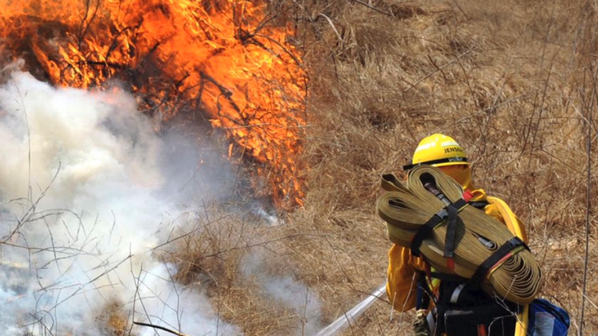 The Orange County Fire Authority battled a brush fire at Irvine Regional Park on July 5, 2020. (OCFA)