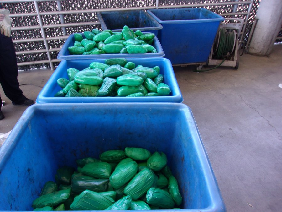 Customs and Border Protection officers seized 668 pounds of meth concealed in a cactus shipment in Otay Mesa. (Customs and Border Protection)