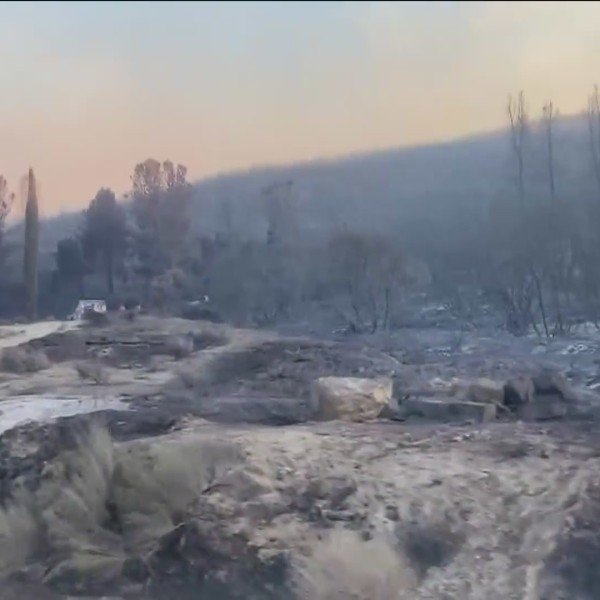Devastation lines Pine Canyon Road after the Lake Fire tore through the area, Aug. 13, 2020. (KTLA)