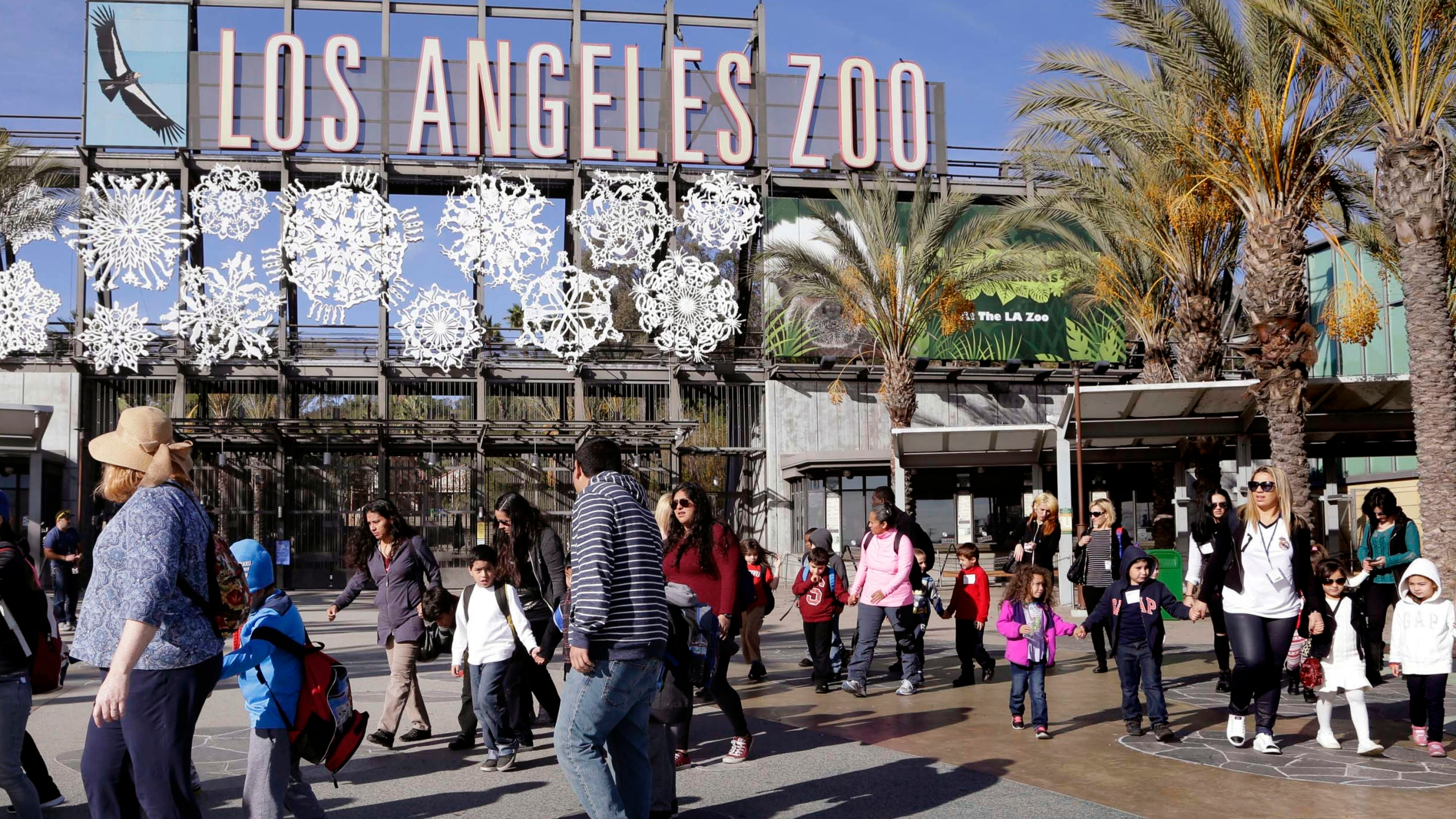 L A Zoo Announces Reopening Date Will Begin Accepting Reservations Starting Wednesday Ktla