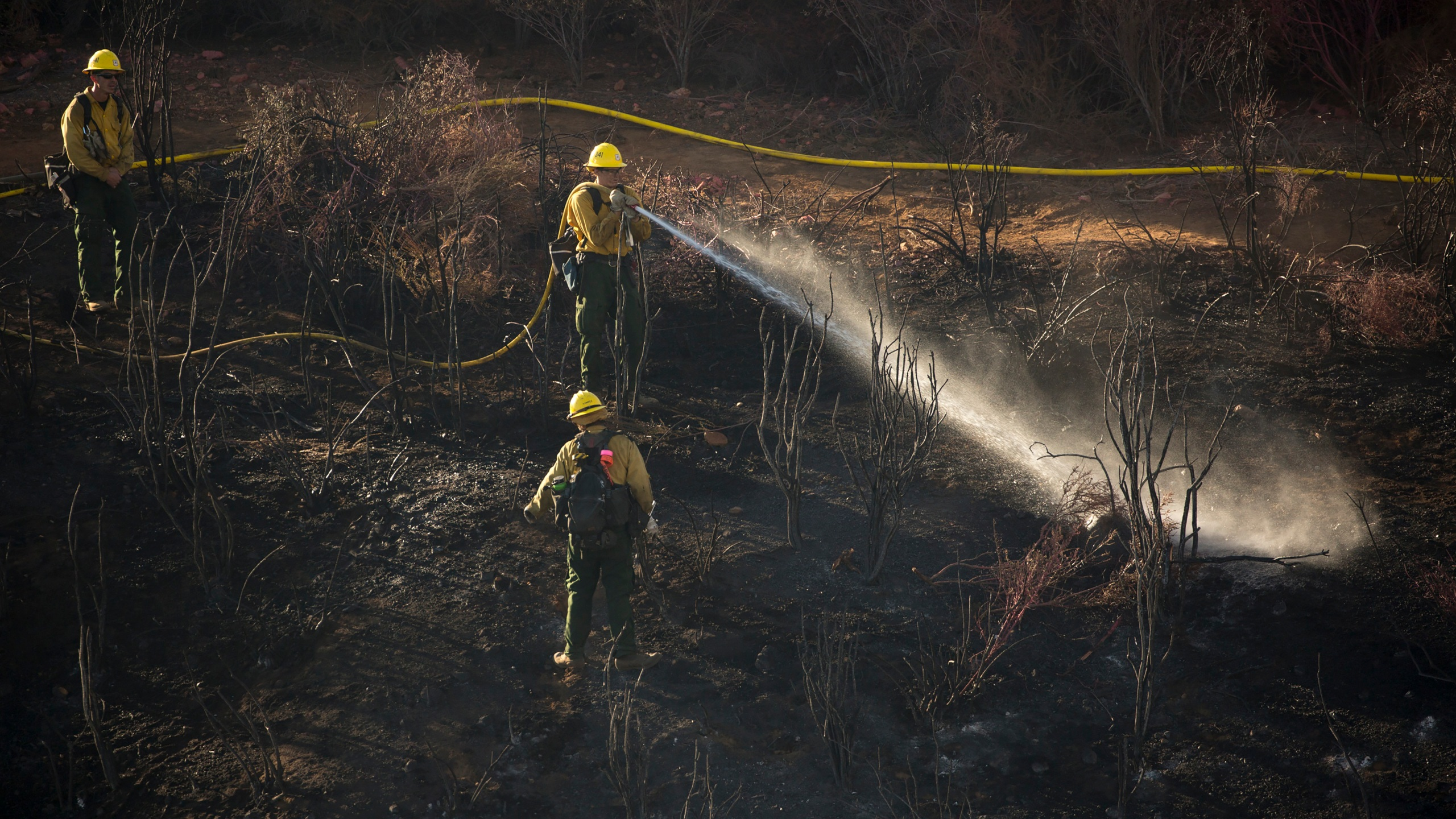 Hand crews work on the remaining hot spots from a brush fire at the Apple Fire in Cherry Valley, Calif., Saturday, Aug. 1, 2020. (AP Photo/Ringo H.W. Chiu)