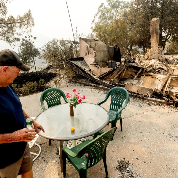 Hank Hanson, 81, looks at artificial flowers that remained standing as the LNU Lightning Complex fires destroyed his Vacaville home on Aug. 21, 2020. (AP Photo/Noah Berger)