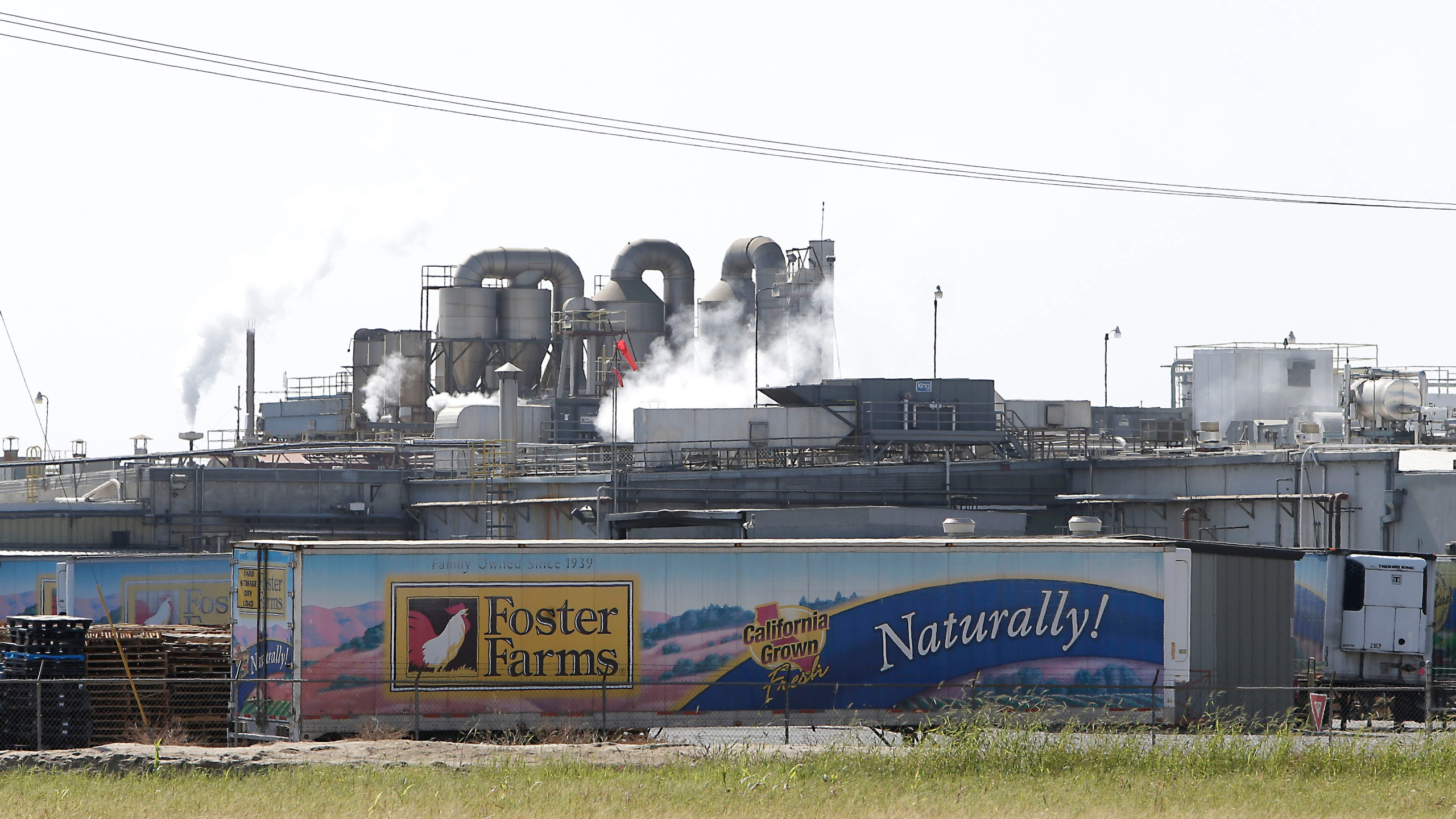 The Foster Farms processing plant in Livingston, California, is seen in 2013.(Rich Pedroncelli / Associated Press)