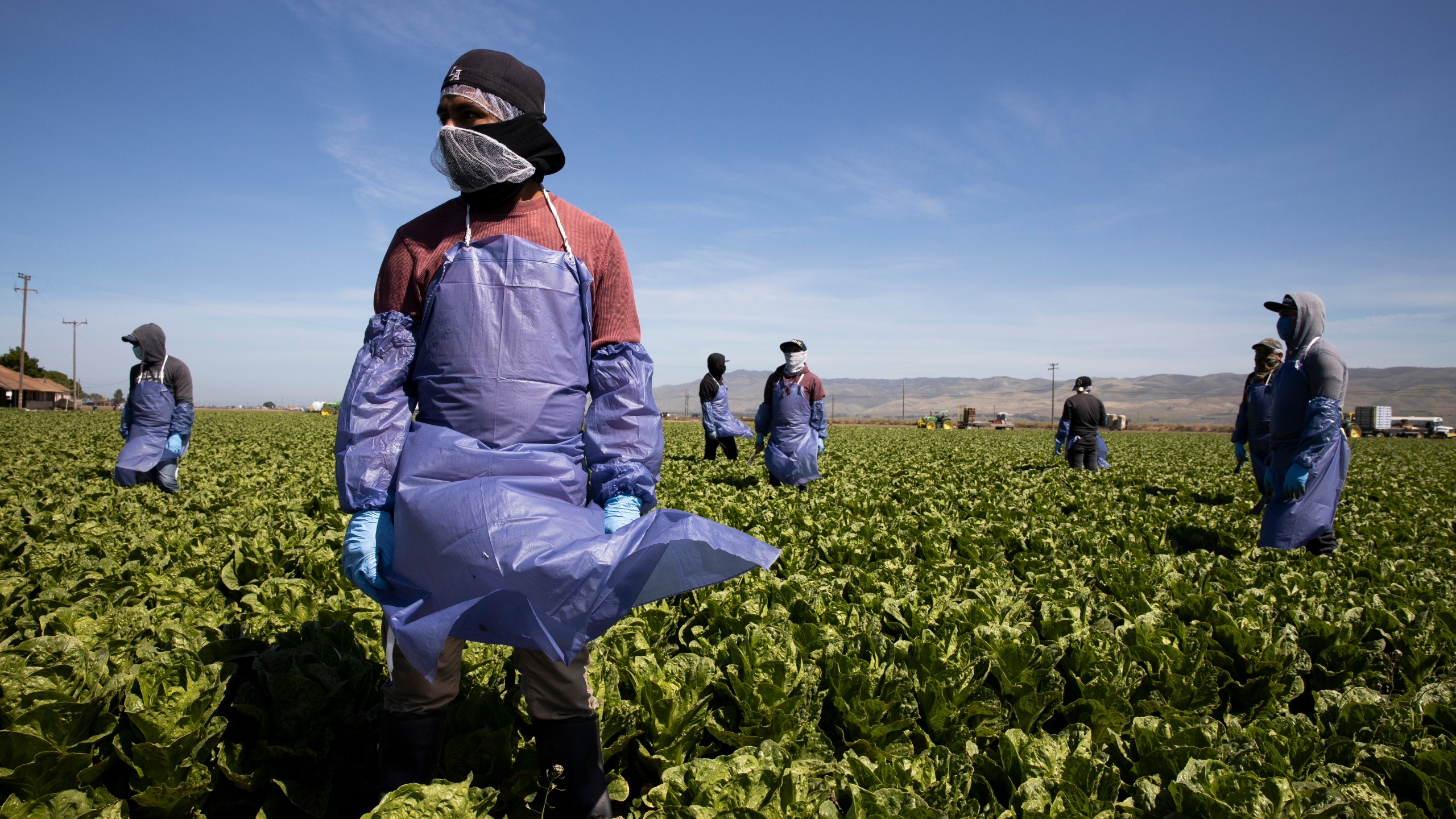 Farmworkers from Fresh Harvest maintain a safe distance as a machine is moved on April 27, 2020 in Greenfield. (Brent Stirton/Getty Images)
