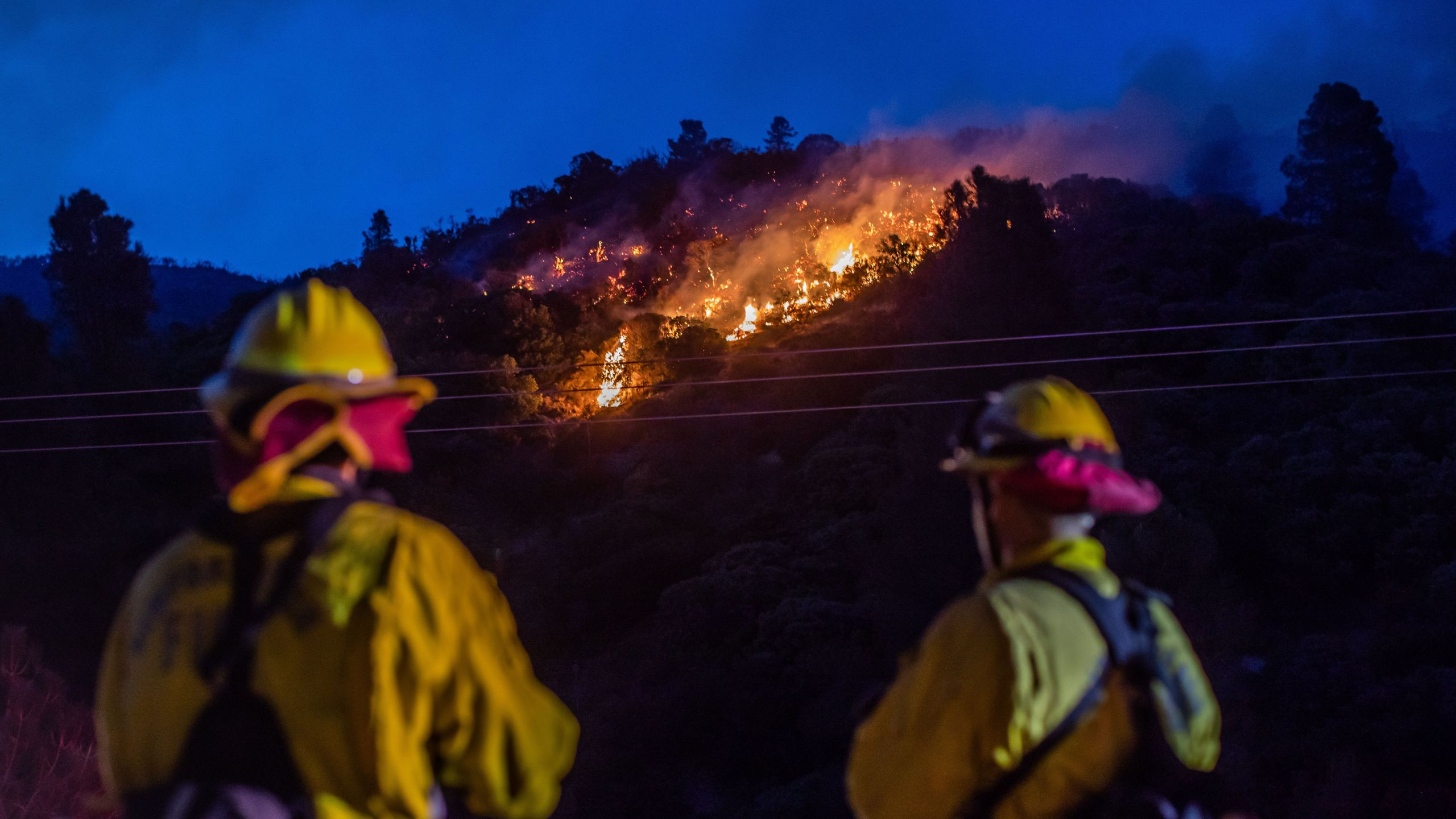 Firefighters work to extinguish hotspots from the Lake Fire at Pine Canyon Road in the Angeles National Forest, by Lake Hughes, 60 miles north of Los Angeles, California on Aug. 13, 2020. (APU GOMES/AFP via Getty Images)