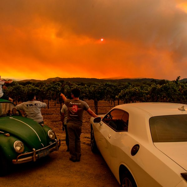 People watch the Walbridge fire, part of the larger LNU Lightning Complex fire, from a vineyard in Healdsburg on Aug. 20, 2020. (JOSH EDELSON/AFP via Getty Images)