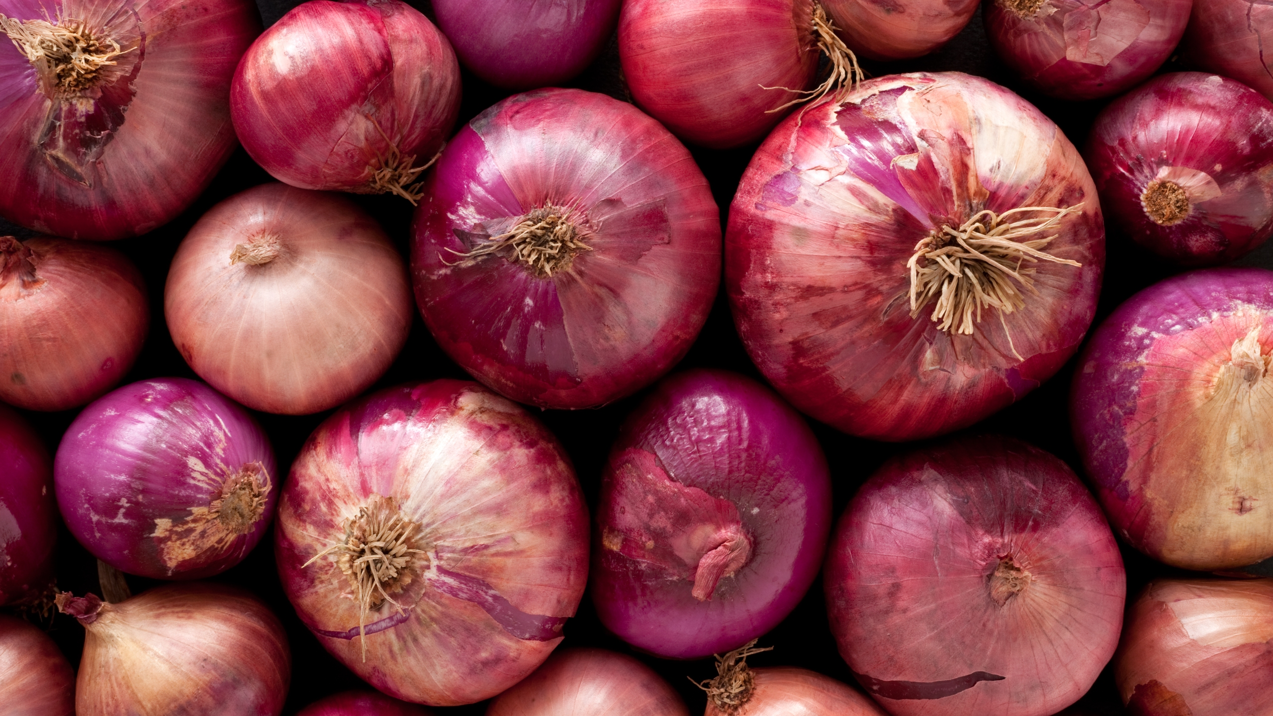 Red onions are seen in this file photo. (Getty Images)