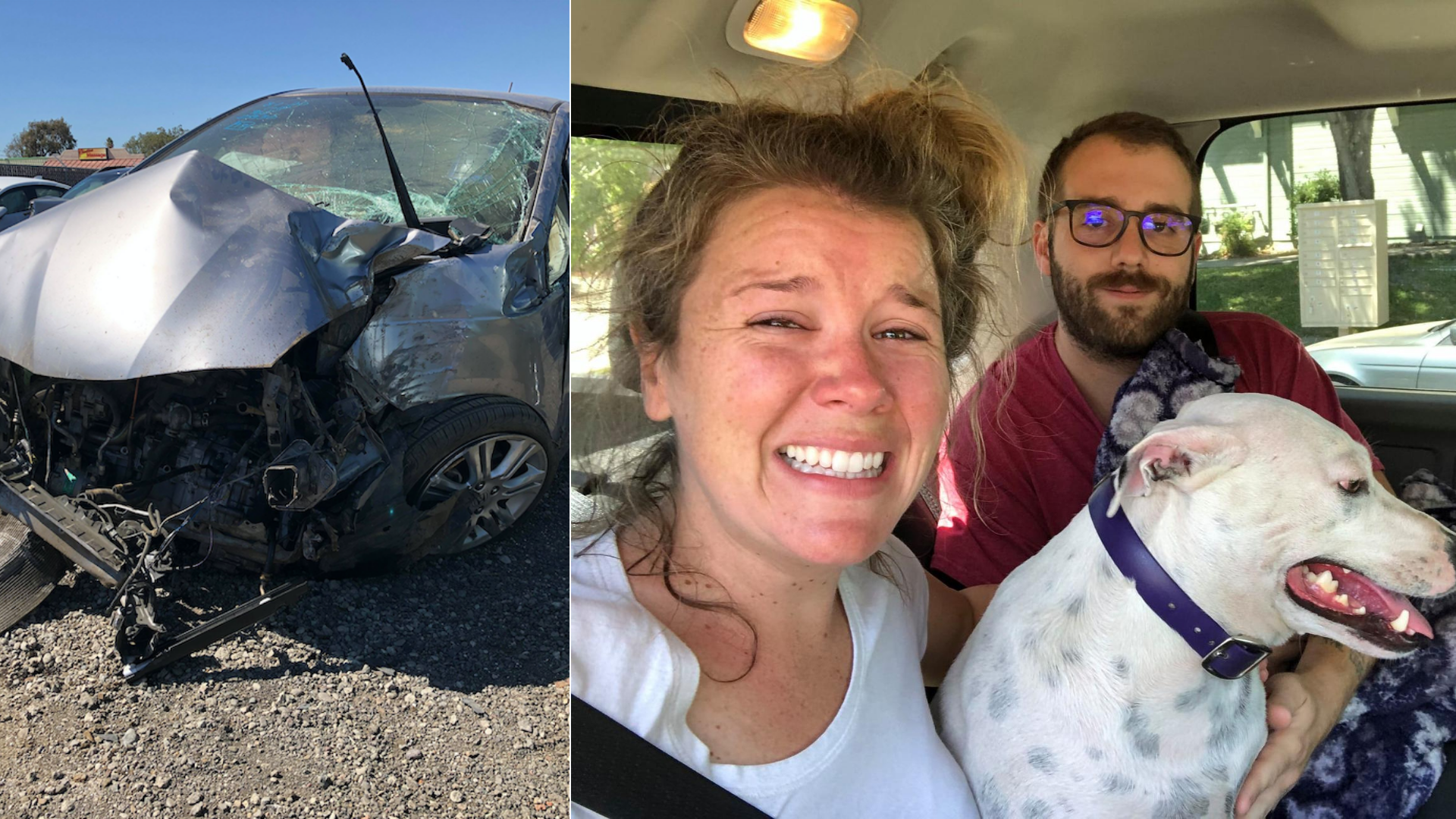 This combination photo shows Stefanie and Duane Lindsay's damaged car after a crash in Northern California on Aug. 1, 2020, and the couple posing with their dog after it was ejected from the vehicle. (Stefanie Grows via CNN)