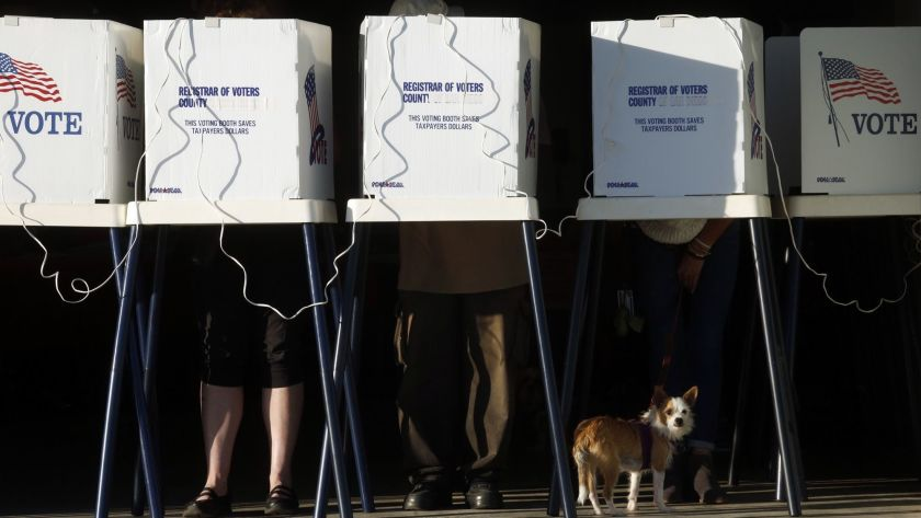 A dog rests beneath a row of voting booths in a Los Angeles County election.(Genaro Molina / Los Angeles Times)