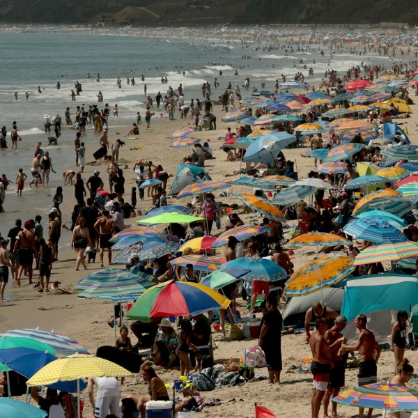 Beachgoers create a forest of umbrellas as thousands seek refuge on the beach at Santa Monica Aug. 15, 2020. (Luis Sinco/ Los Angeles Times)