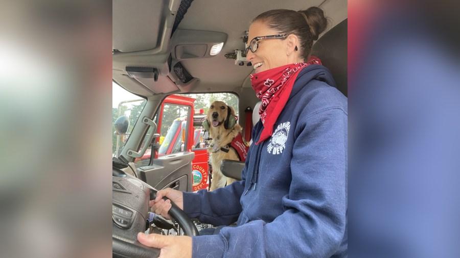 Kerith rides shotgun in a firetruck in Marin County in August 2020. (Heidi Carmen via CNN)