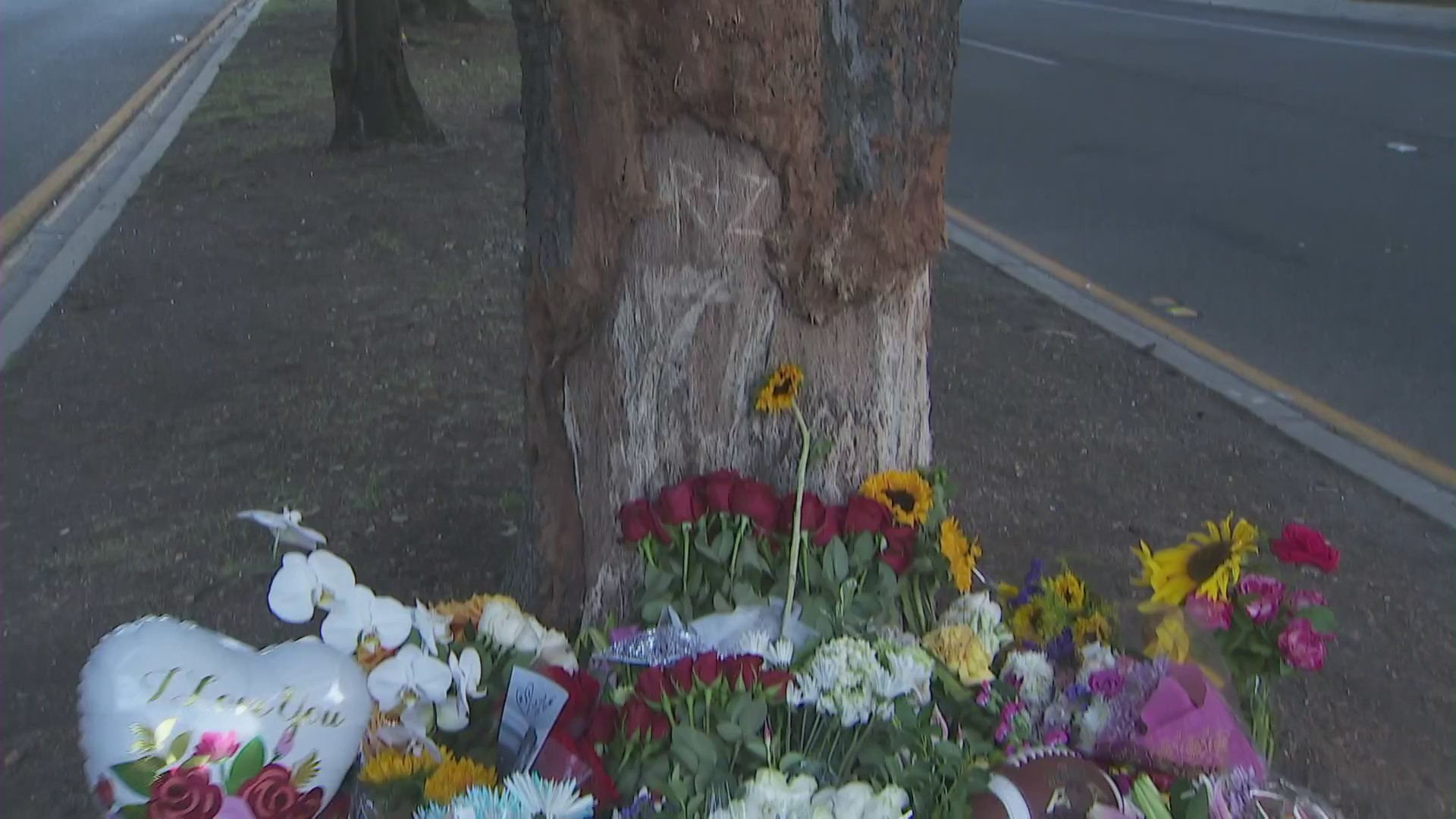 "Flowers are seen by a tree engraved ""R+Z"" in Thousand Oaks on Aug. 2, 2020, when a car crash left two people dead. (KTLA)"