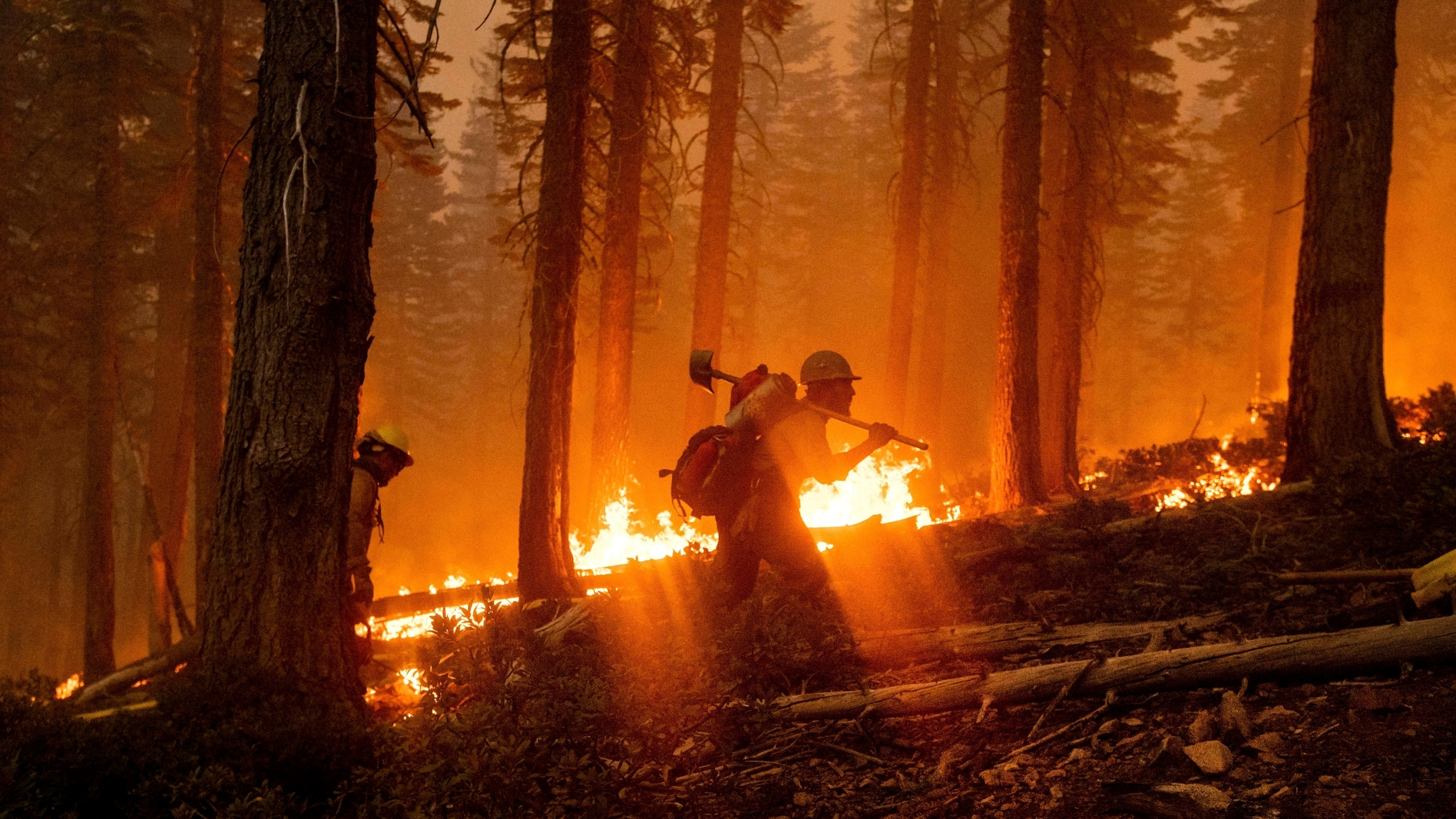 In this Sept. 14, 2020, photo, a firefighter battles the North Complex Fire in Plumas National Forest, Calif. (AP Photo/Noah Berger, File)