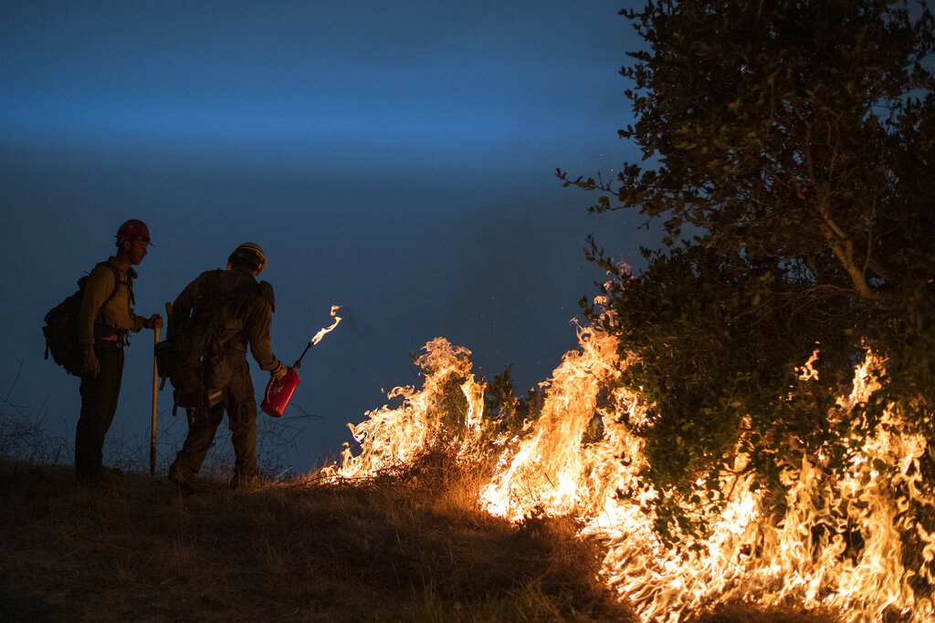 Firefighters light a controlled burn along Nacimiento-Fergusson Road to help contain the Dolan Fire near Big Sur on Sept. 11, 2020. (AP Photo/Nic Coury, File)