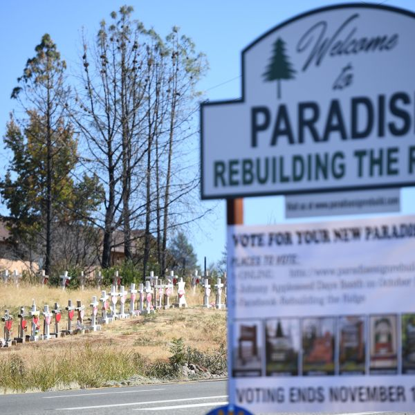 Crosses line the road in Paradise, California to remember the 86 people who died as a result of the Camp Fire on Oct. 2, 2019. (ROBYN BECK/AFP via Getty Images)