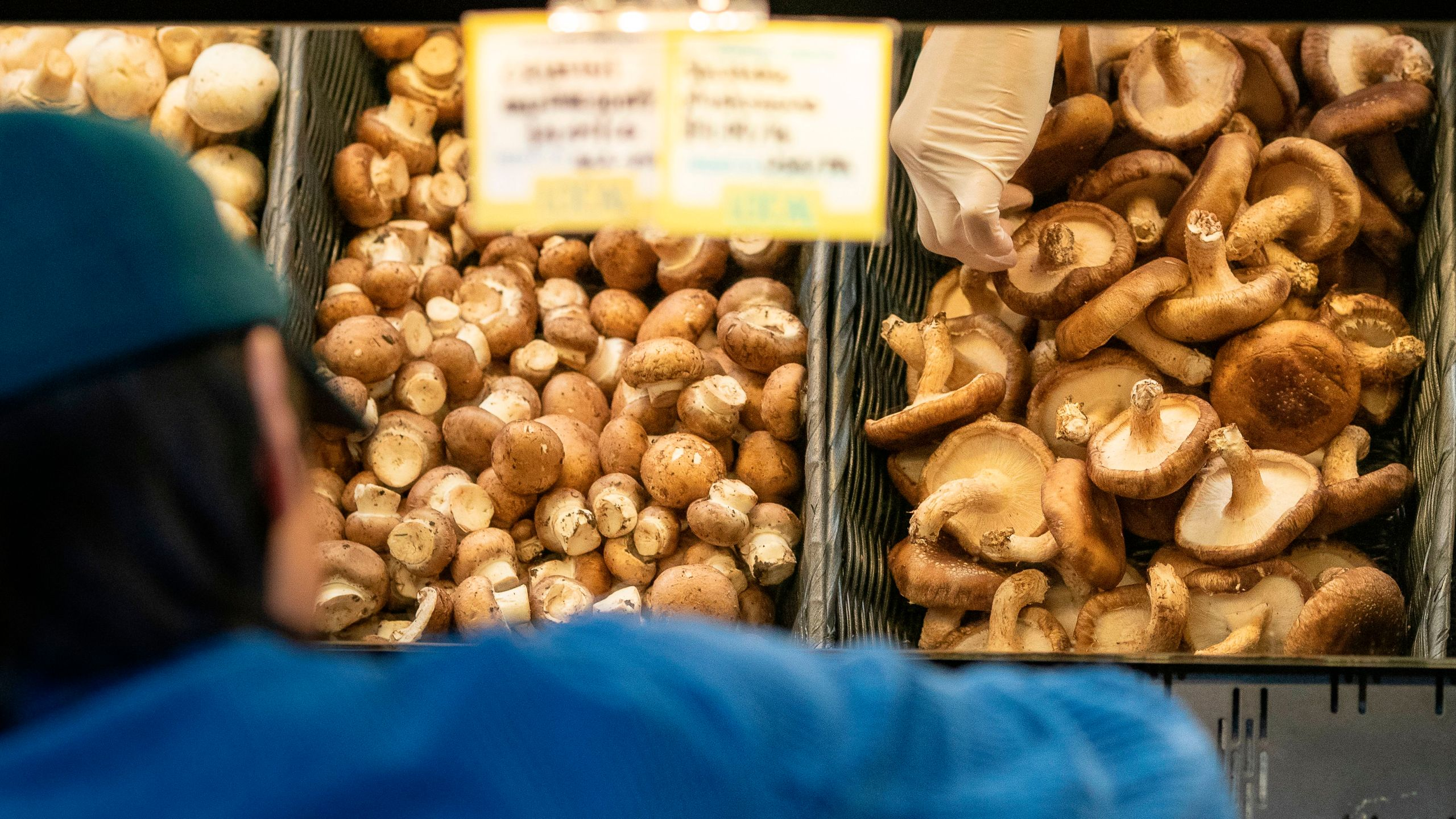 A customer wearing rubber gloves shops for mushrooms at a MOM's Organic Market on April 2, 2020, in Washington, DC. (ALEX EDELMAN/AFP via Getty Images)