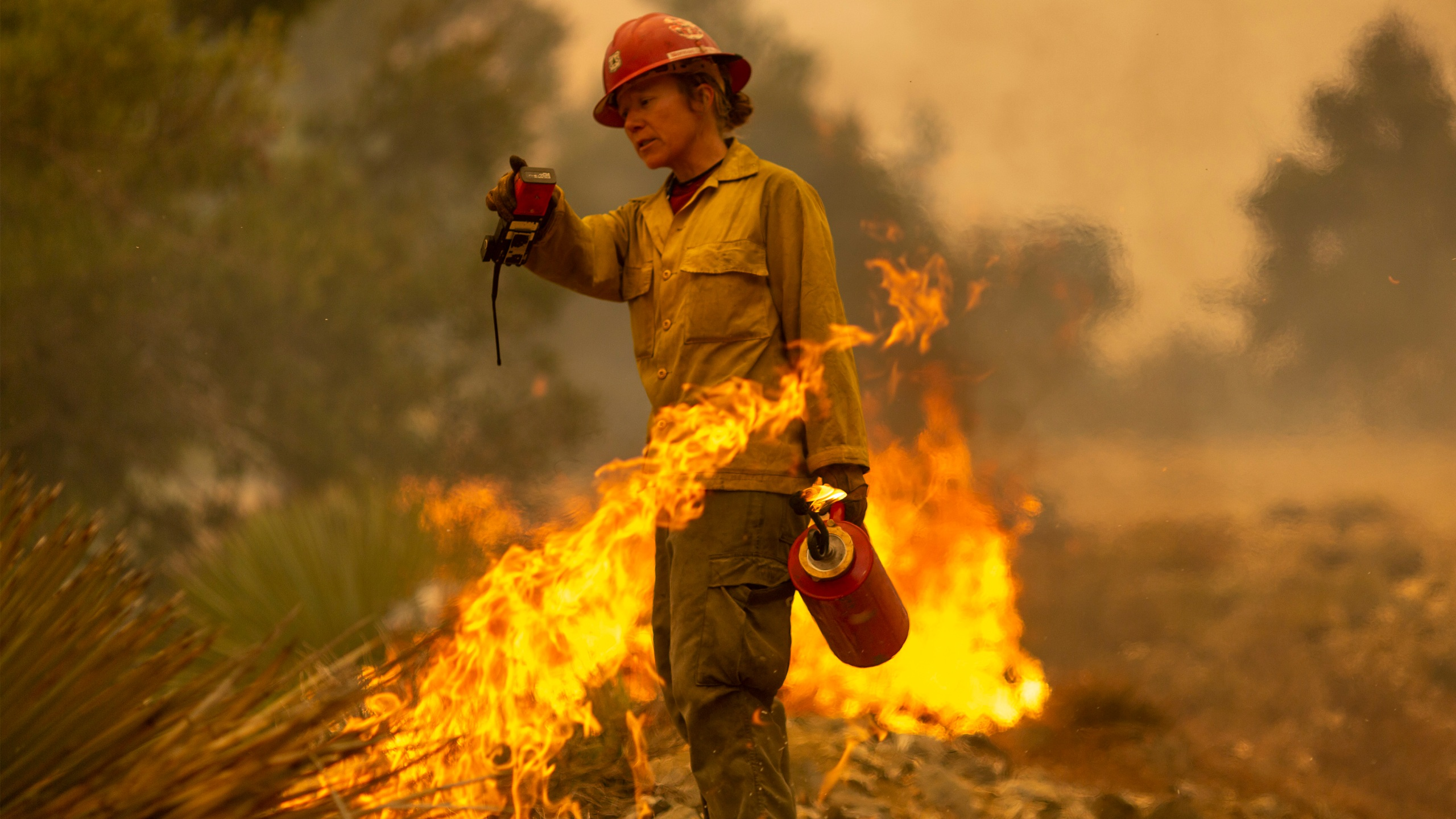 Mormon Lake Hotshots firefighter Sara Sweeney uses a drip torch to set a backfire to protect mountain communities from the Bobcat Fire in the Angeles National Forest on September 10, 2020 north of Monrovia, California. (David McNew/Getty Images)
