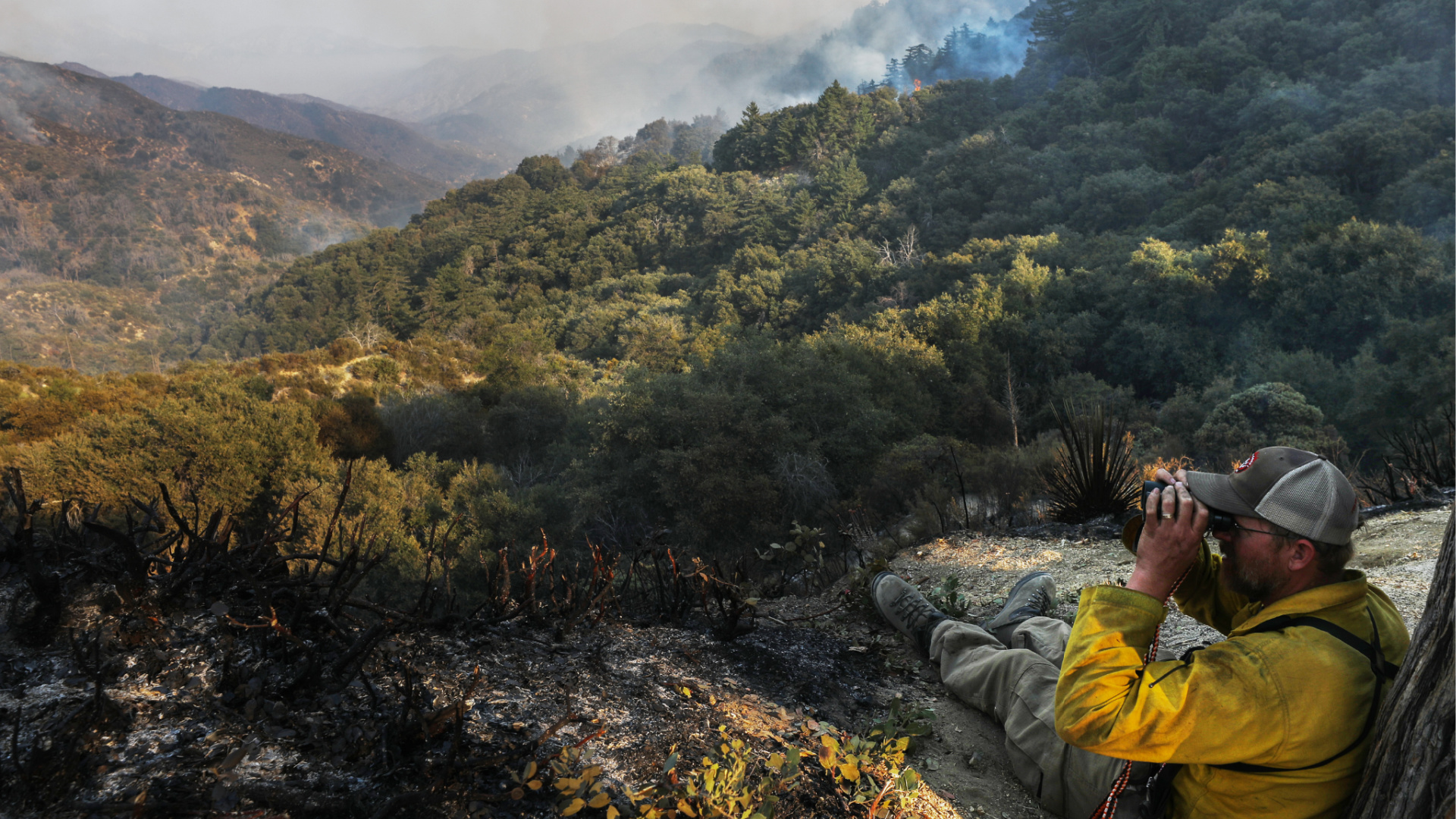 A firefighter keeps lookout from a ridge as smoke drifts during the Bobcat Fire in the Angeles National Forest on Sept. 23, 2020 near Pasadena. (Mario Tama/Getty Images)