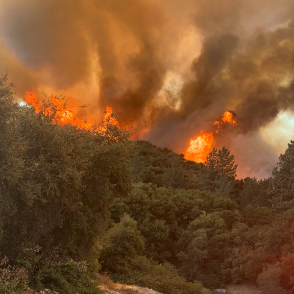 The Bobcat Fire burns near Cogswell Dam in the Angeles National Forest on Sept. 6, 2020. (Angeles National Forest/ Twitter)