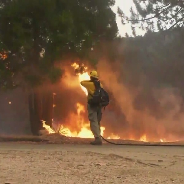 A firefighter is seen battling the Bobcat Fire in the Angeles National Forest. (OnScene.TV)