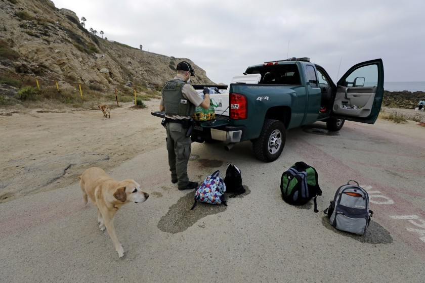 Doug Wall, game warden with the California Department of Fish and Wildlife, confiscates bags of mussels collected without a license at White Point Beach in San Pedro in July.(Myung J. Chun / Los Angeles Times)