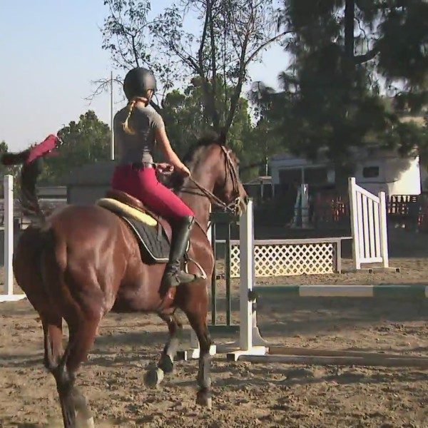 Anaheim Equestrian Center (KTLA)