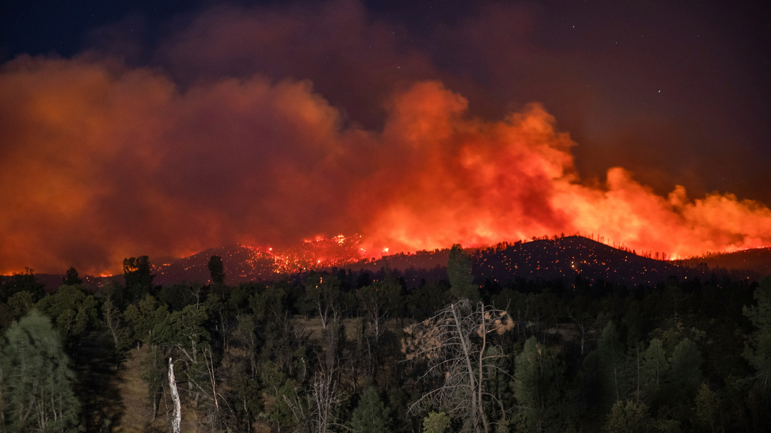 Flame are visible from the Zogg Fire on Clear Creek Road near Igo, Calif., on Monday, Sep. 28, 2020. (AP Photo/Ethan Swope)
