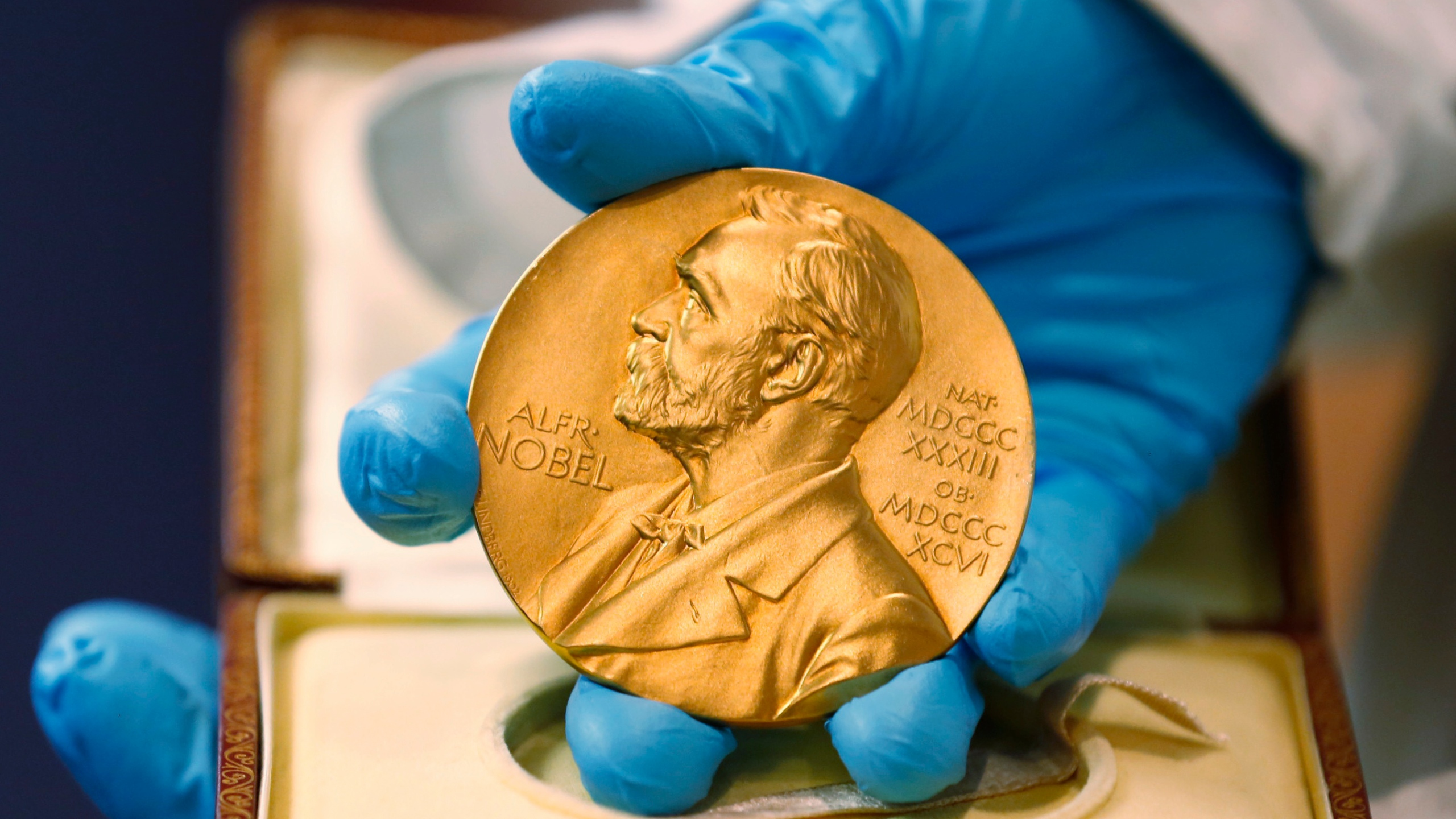 In this April 17, 2015, file photo, a national library employee shows a gold Nobel Prize medal in Bogota, Colombia. (AP Photo/Fernando Vergara, File)