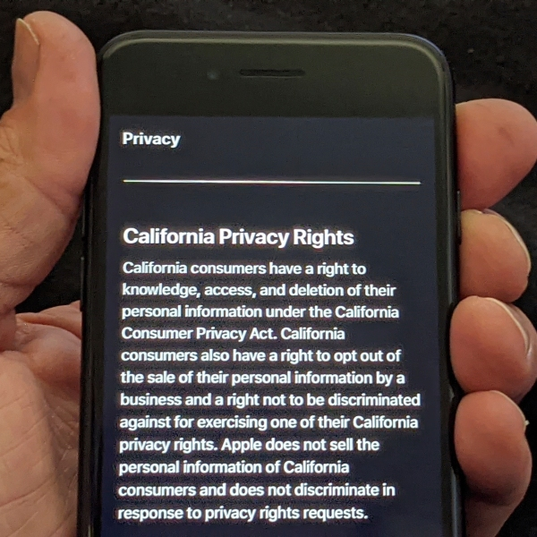 This photo illustration shows Apple's privacy policy on an iPhone in Los Angeles Friday, Oct. 2, 2020. (AP Photo/Damian Dovarganes)
