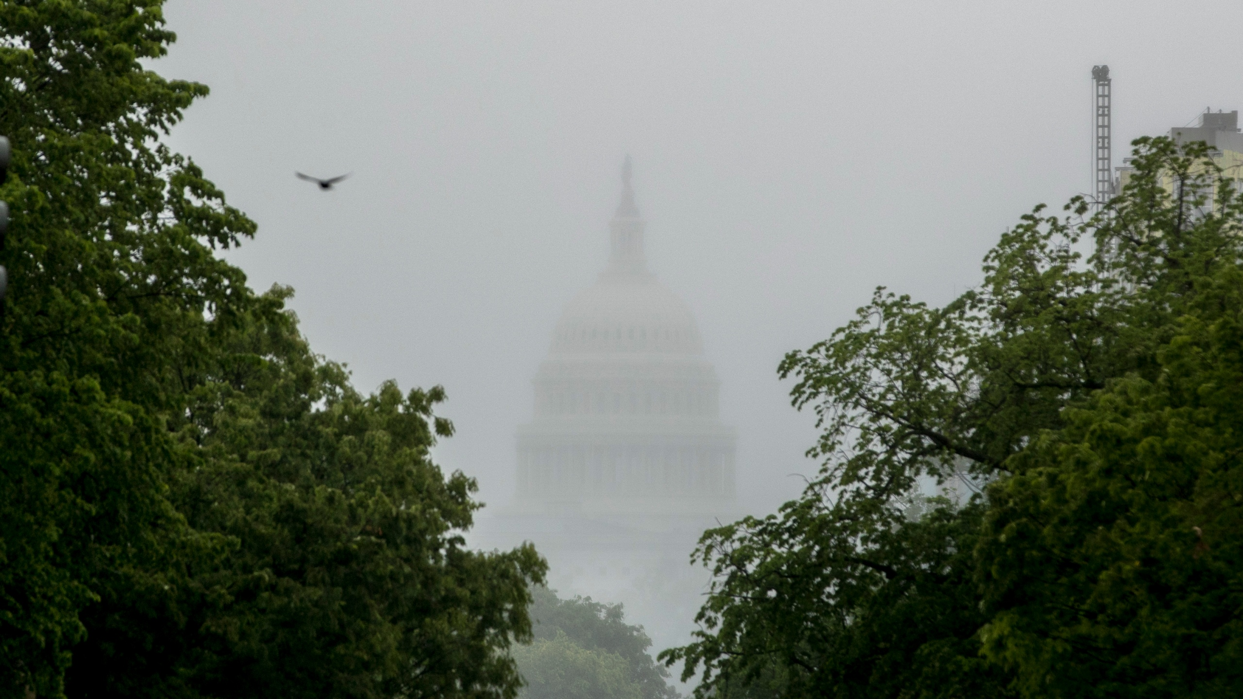 In this May 22, 2020, file photo the Dome of the U.S. Capitol Building is visible through heavy fog in Washington. (AP Photo/Andrew Harnik, File)