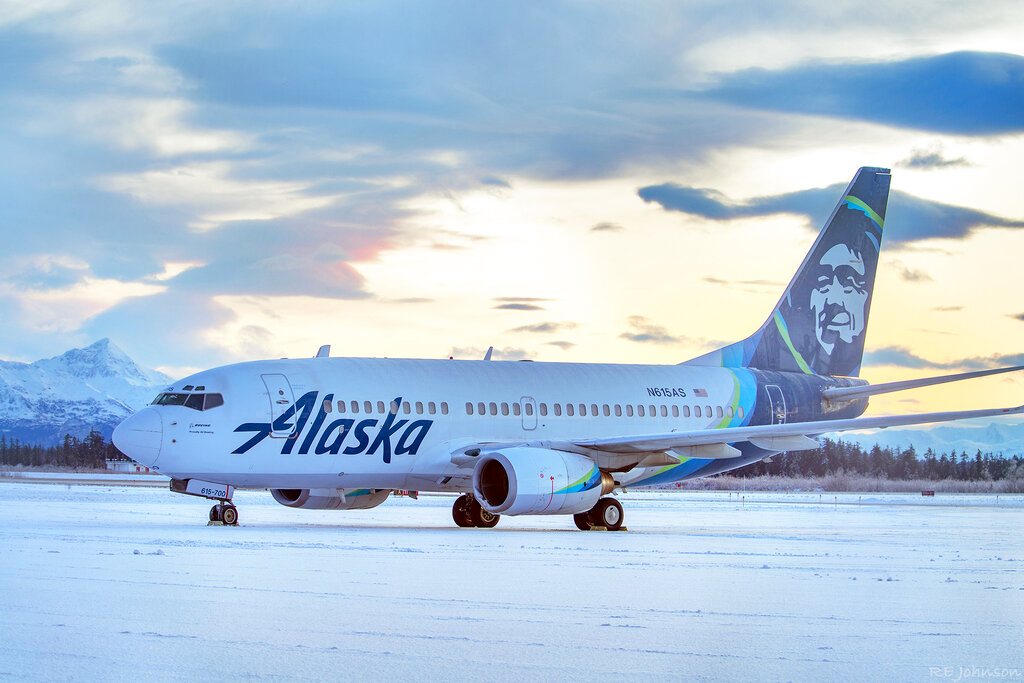 This early Sunday, Nov. 15, 2020, photo provided by R E Johnson shows an Alaska Airlines jet that struck a brown bear while landing in the early evening the day before, killing the animal and causing damage to the plane, at Yakutat Airport in Yakutat, Alaska. (R E Johnson via AP)