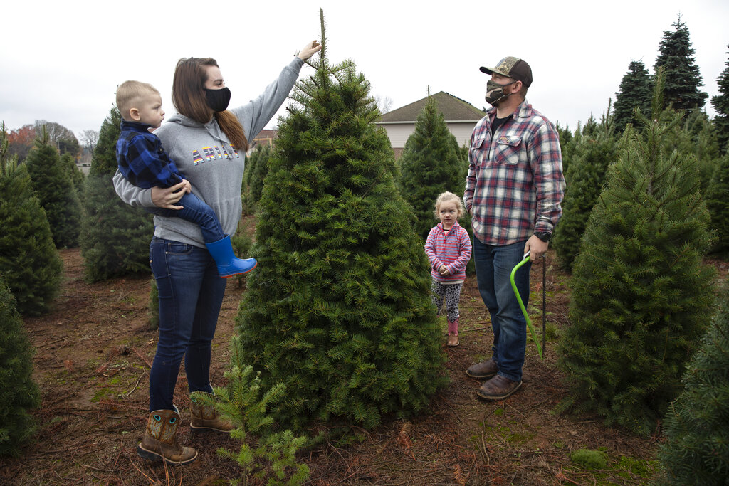 Josh and Jessica Ferrara shop for Christmas trees with son Jayce, 1 year and Jade, 3 years, at Sunnyview Christmas Tree farm on Nov. 21, 2020 in Salem, Ore. (AP Photo/Paula Bronstein)