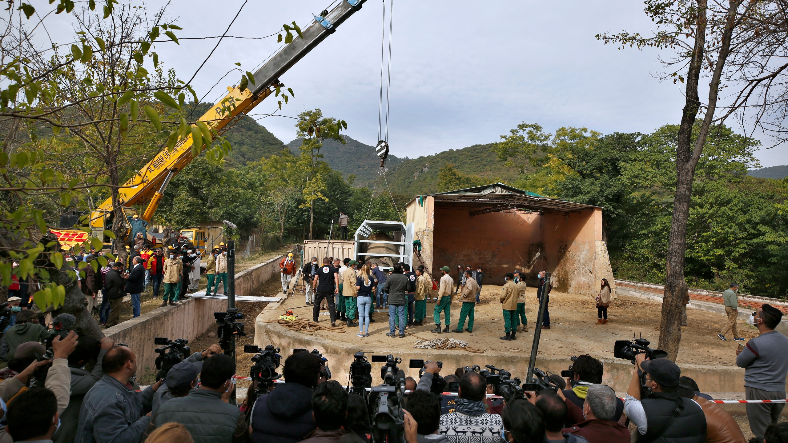 Pakistani wildlife workers and experts from the international animal welfare organization Four Paws use a crane to move a crate carrying an elephant named Kaavan for transporting him to a sanctuary in Cambodia, at the Marghazar Zoo in Islamabad, Pakistan, Sunday, Nov. 29, 2020. (AP Photo/Anjum Naveed)