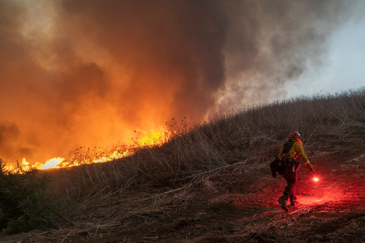 Feds release plan to remove, change vegetation to reduce massive wildfires in U.S. West