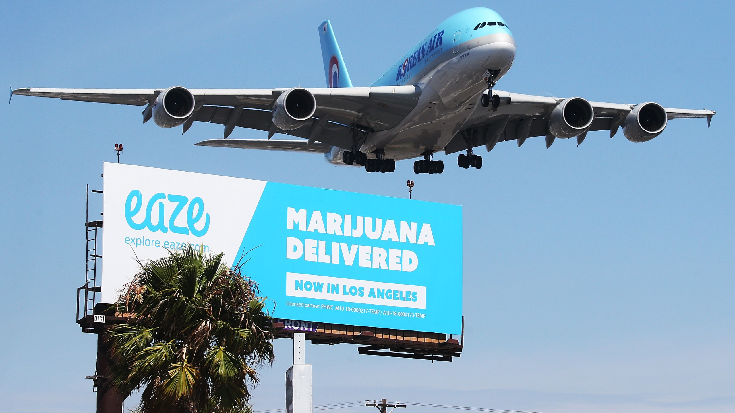 An airplane descends to land at Los Angeles International Airport above a billboard advertising the marijuana delivery service Eaze on July 12, 2018 in Los Angeles, California. (Mario Tama/Getty Images)
