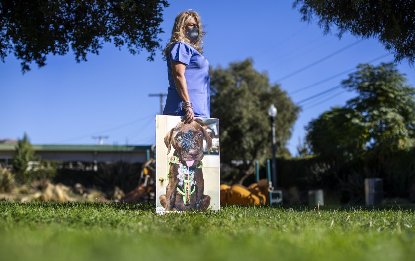 Sedna Moseley poses with a large photo of her dog Riley, whom she adopted as a puppy, in this undated photo. (Gina Ferazzi / Los Angeles Times)