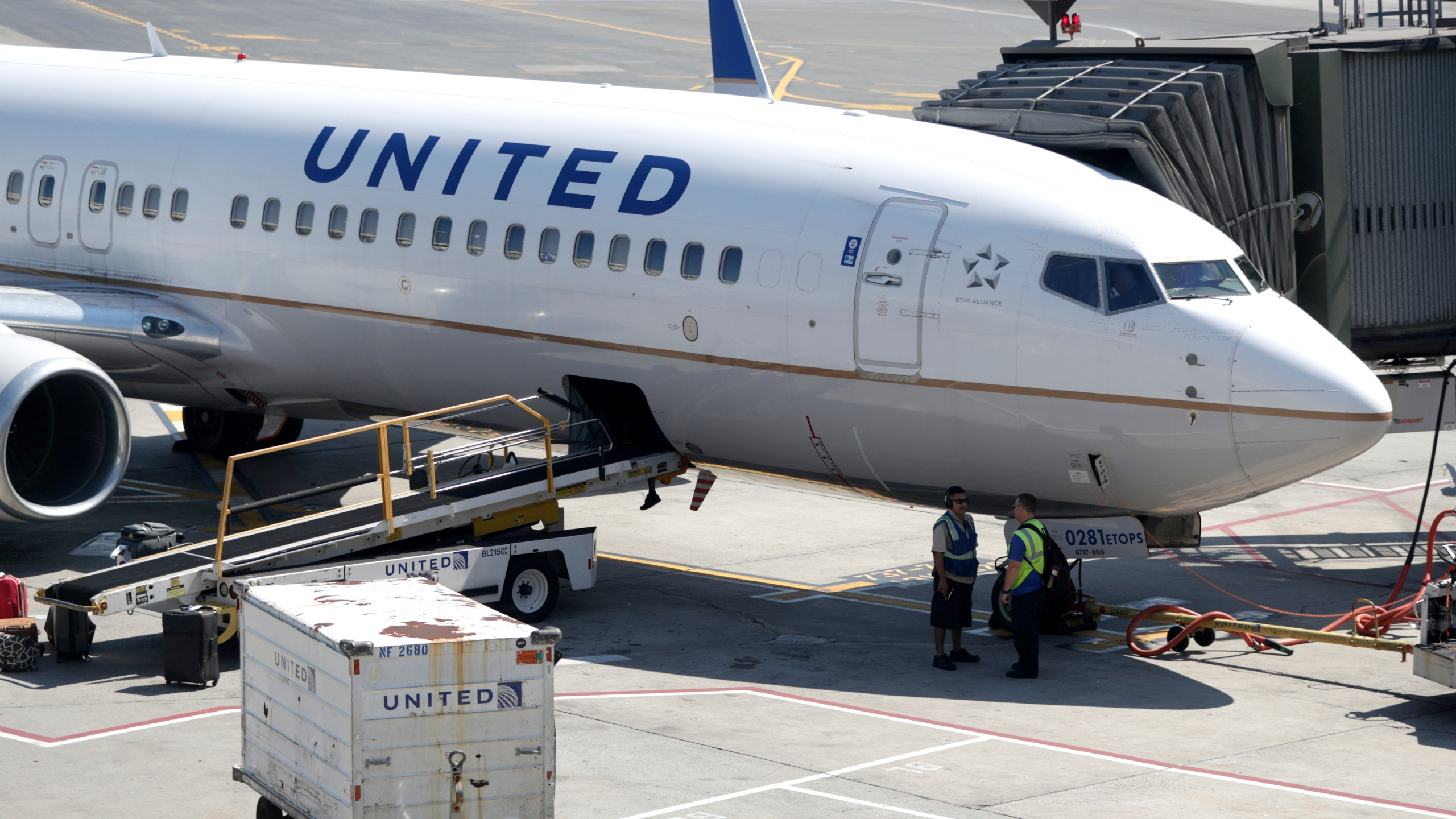 In this July 18, 2018, file photo a United Airlines commercial jet sits at a gate at Terminal C of Newark Liberty International Airport in Newark, N.J. (AP Photo/Julio Cortez, File)