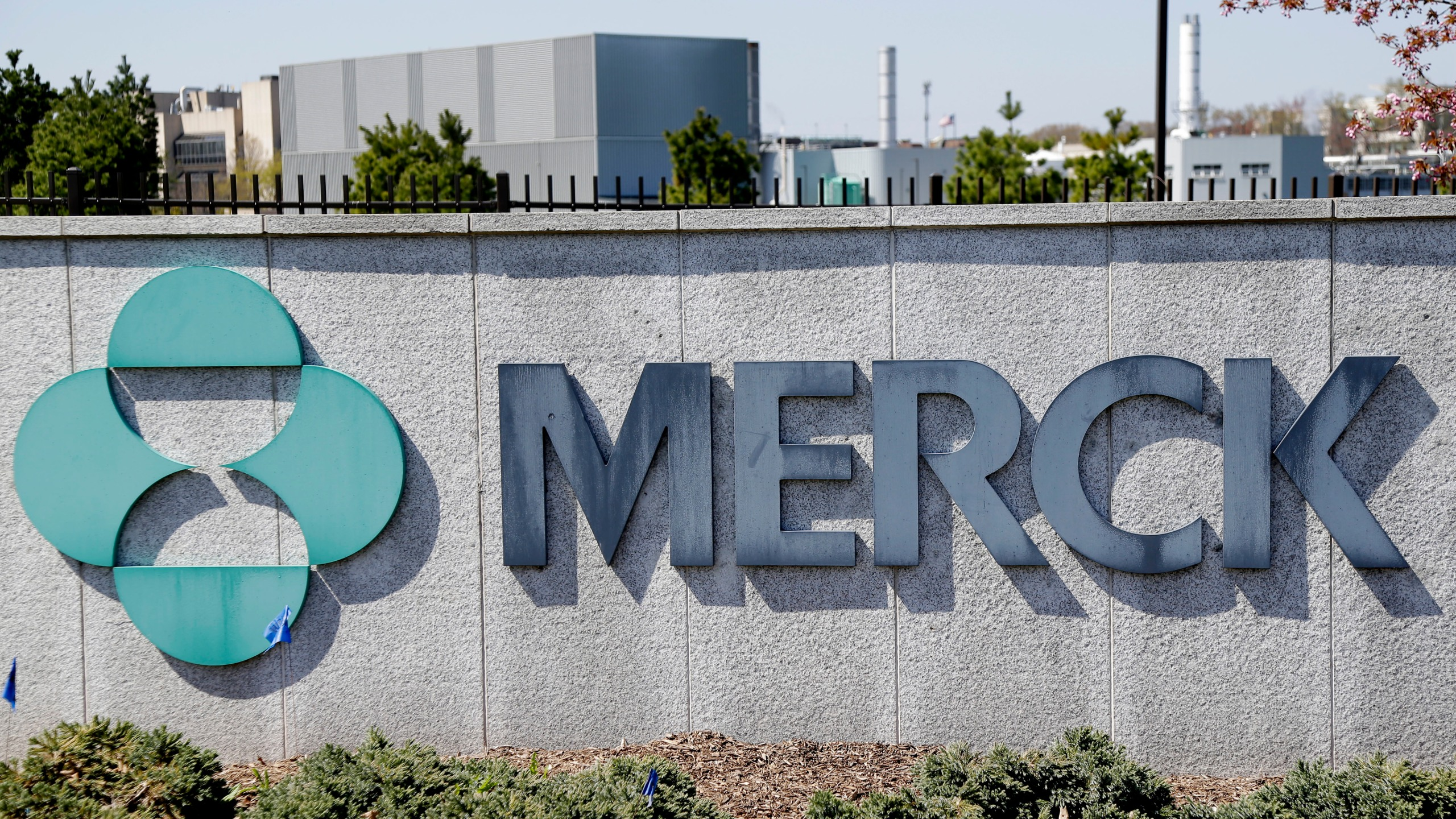 This May 1, 2018, file photo shows Merck corporate headquarters in Kenilworth, N.J. The drugmaker will stop developing two potential COVID-19 vaccines after seeing poor results in early-stage studies. The company said Monday, Jan. 25, 2021, that it will focus instead on studying two possible treatments for the virus that also have yet to be approved by regulators. (AP Photo/Seth Wenig, File)
