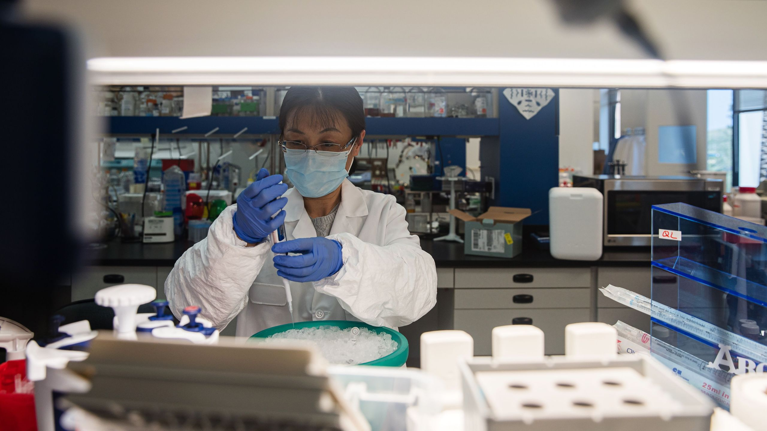 A scientist works in the lab that is focused on fighting COVID-19 at Sorrento Therapeutics in San Diego on May 22, 2020. (ARIANA DREHSLER/AFP via Getty Images)