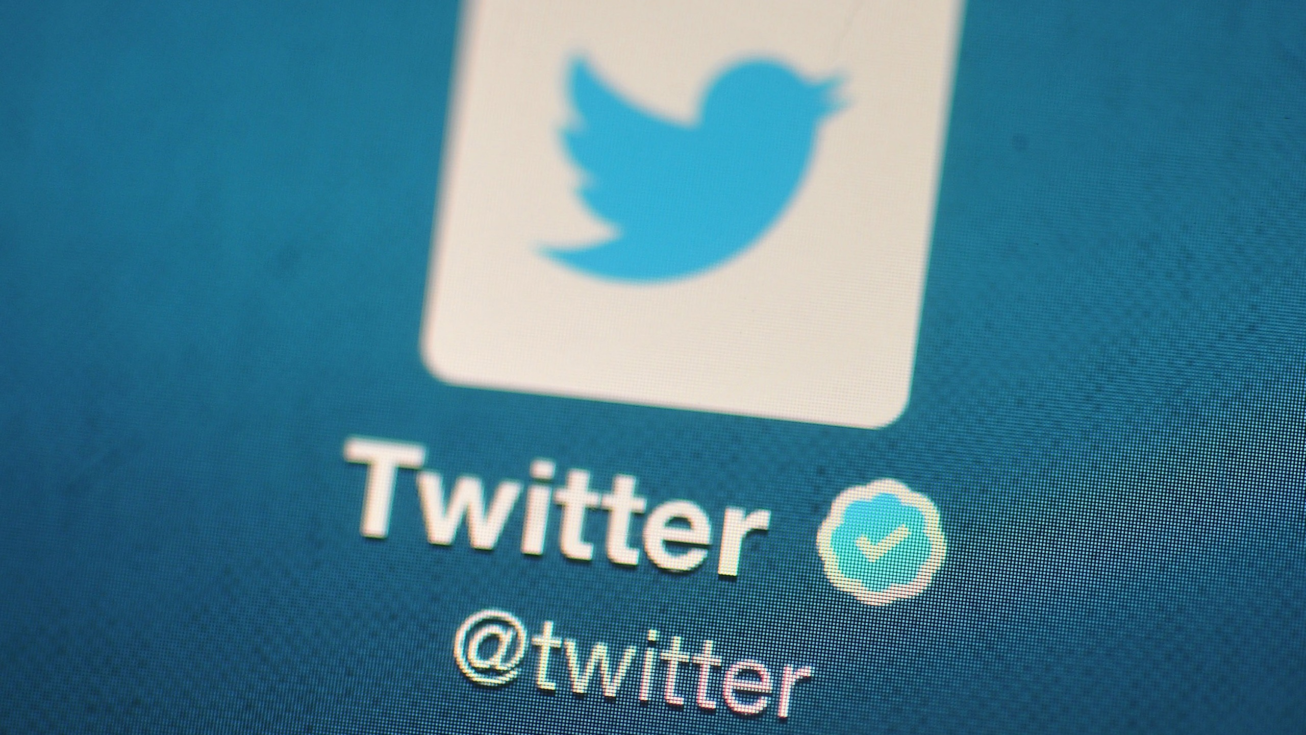 In this photo illustration, The Twitter logo is displayed on a mobile device. (Bethany Clarke/Getty Images)
