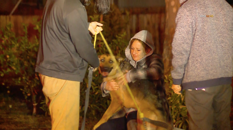 A dog was rescued from a house fire in Hemet on Jan. 9, 2021. (RMG News)
