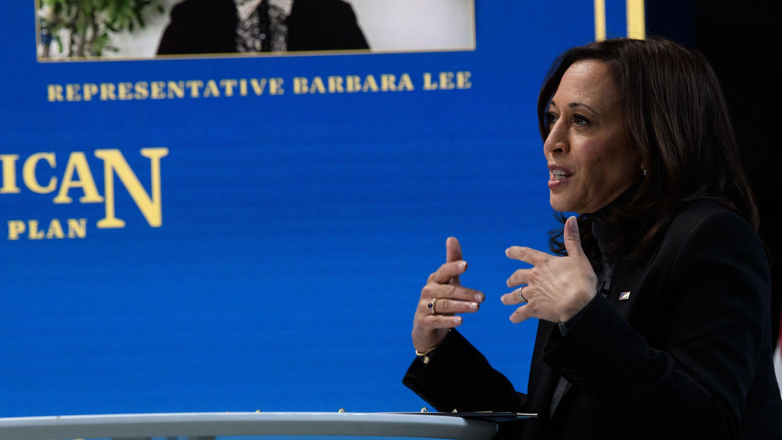 Vice President Kamala Harris speaks during a virtual roundtable with lawmakers and women leaders from advocacy organizations, in Washington, DC, on February 18, 2021. (NICHOLAS KAMM/AFP via Getty Images)
