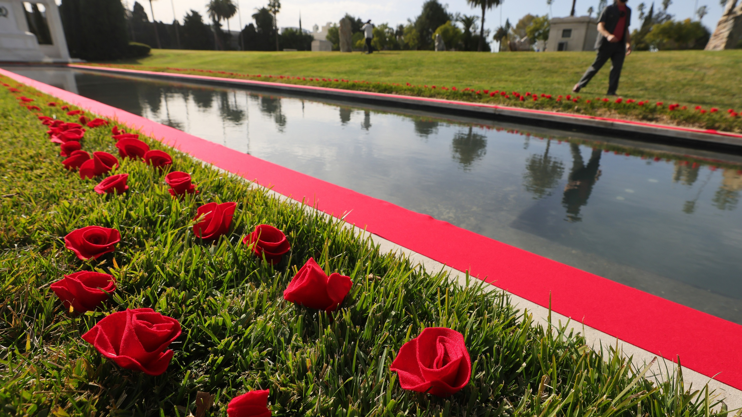 A Rose River Memorial tribute installation for the 400,000 deceased U.S. victims of the COVID-19 pandemic is seen at Hollywood Forever Cemetery on January 19, 2021 in Los Angeles, California. (Photo by Mario Tama/Getty Images)