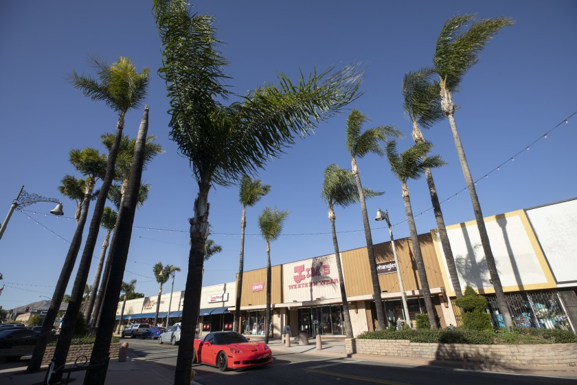Palm fronds on San Fernando Road in San Fernando get blown about by high winds Feb. 20, 2021.(Myung J. Chun/Los Angeles Times)
