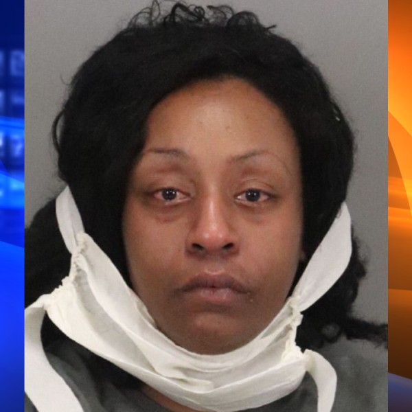 Alena Jenkins is seen in a booking photo released by the Mountain View Police Department.