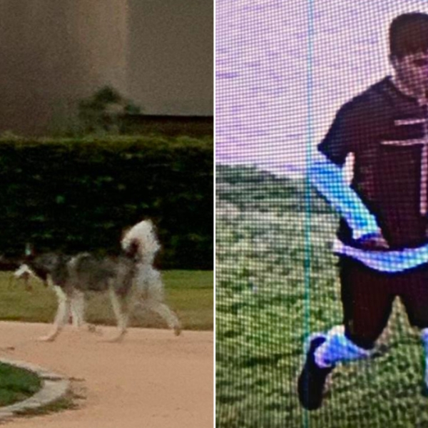 A young male accused of assaulting a 69-year-old Asian man in Irvine is seen in images captured March 19, 2021, and released by Irvine police on March 22, 2021.