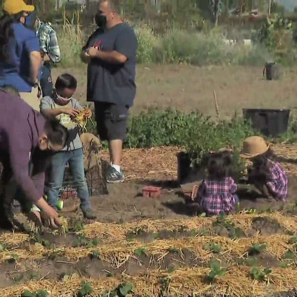 Los Angeles County Board of Supervisors Chair Hilda Solis hosted a day of service Saturday in honor of Cesar Chavez Day in South El Monte March 27, 2021. (KTLA)